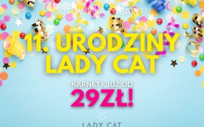 11. URODZINY LADY CAT